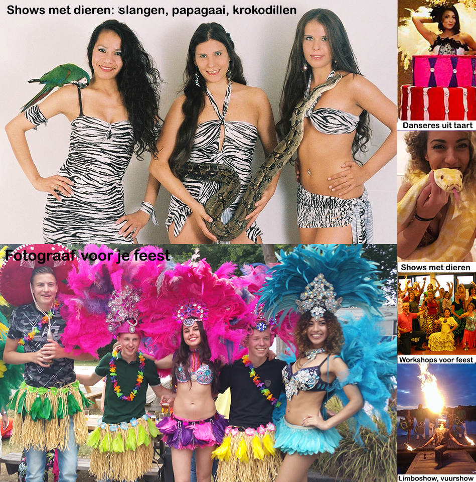 Tropical discoshow